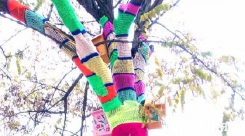 На Позняках появились деревья в ярких вязаных шарфах