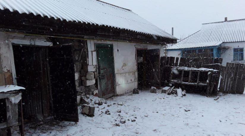 В Киевской области задержали псевдоволонтеров с мертвыми животными в багажнике
