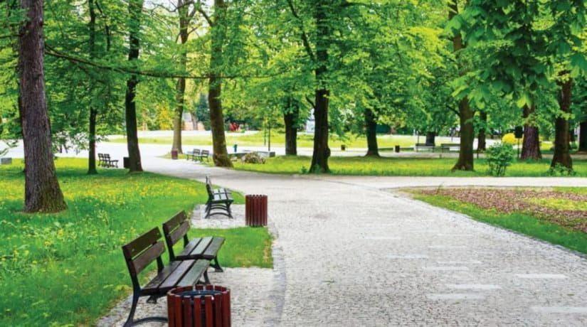 В Дарницком и Подольском районах обустроят новые парки