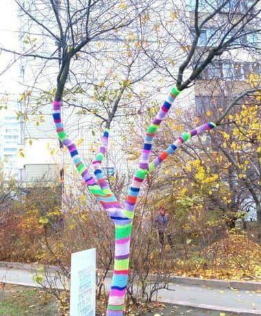 Деревья в шарфах
