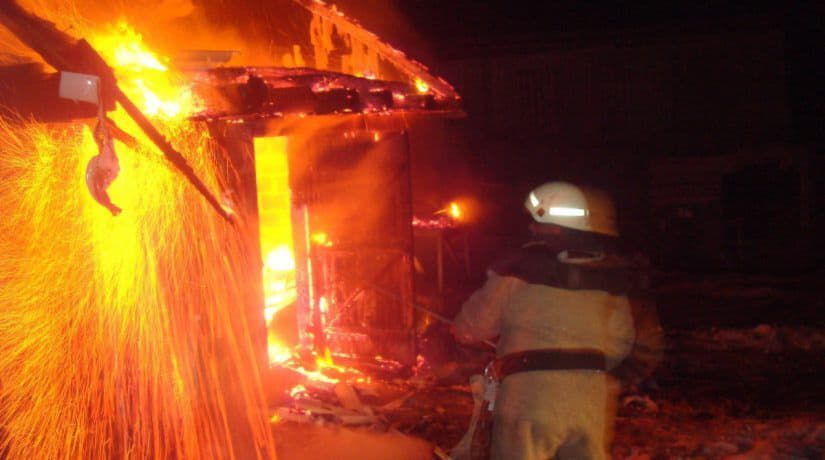 В Киевской области при пожаре на птицефабрике сгорели более тысячи кур