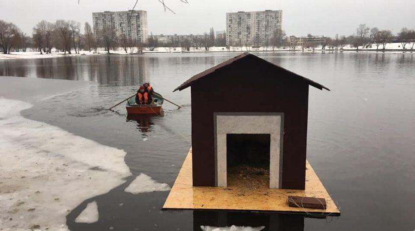 На озере Тельбин появился домик для лебедей