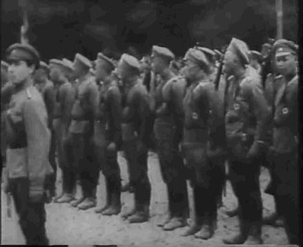 Лубенский полк Сердюцкой дивизии Украинской державы в Киеве