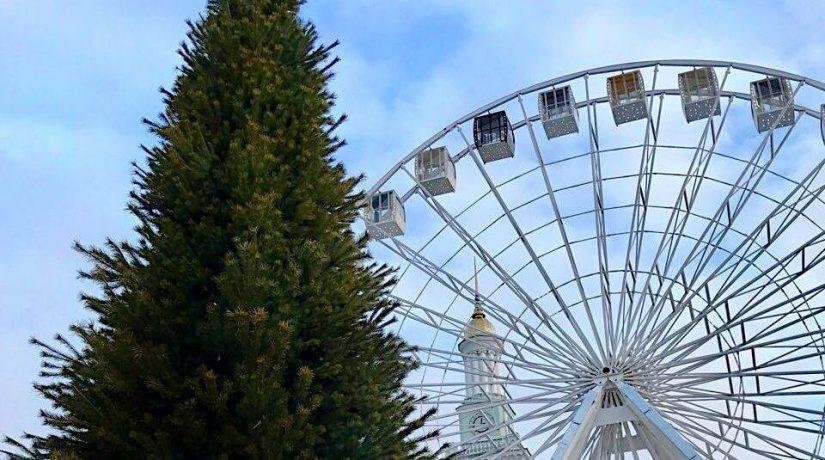 На Контрактовой площади установили елку и сказочных зверей
