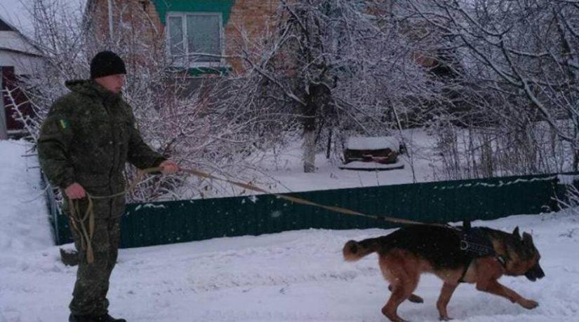 В Киевской области полицейский пес «раскрыл» сразу две кражи