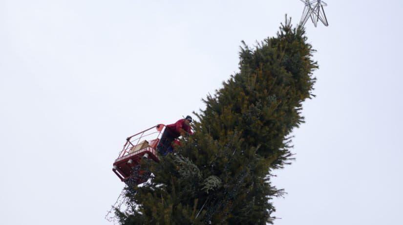 демонтаж елки