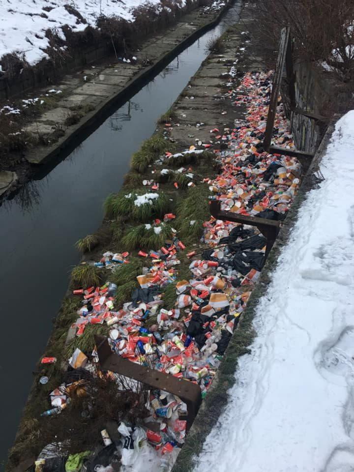 Лыбедь, мусор