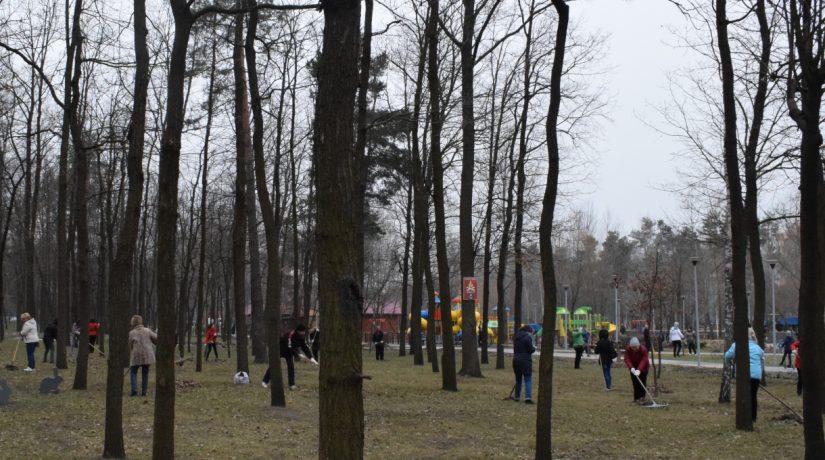 Днепровский район, толока
