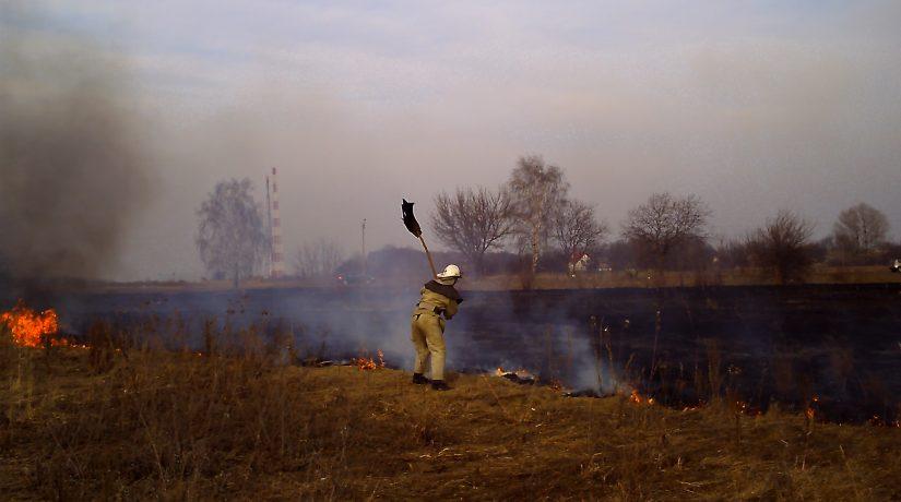 пожар, сжигание травы
