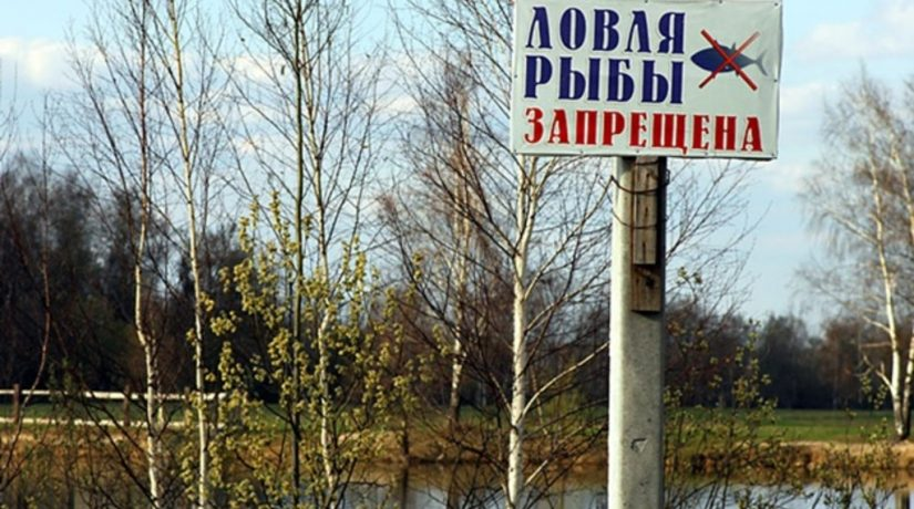 В Киевской области запретили вылов рыбы