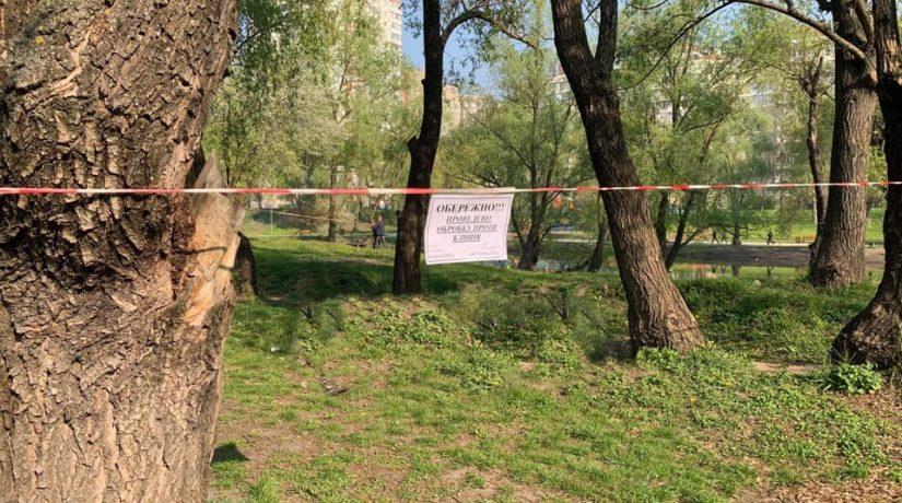 Три парка в Киеве обработали против клещей