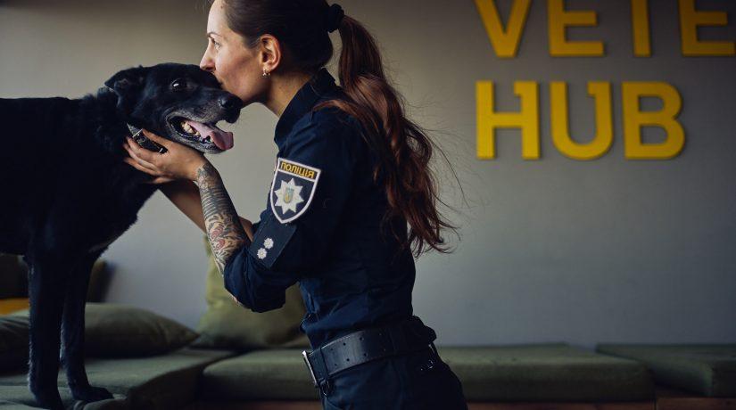 Veteran Hub, полиция и Happy paw запустили проект поддержки бездомных животных