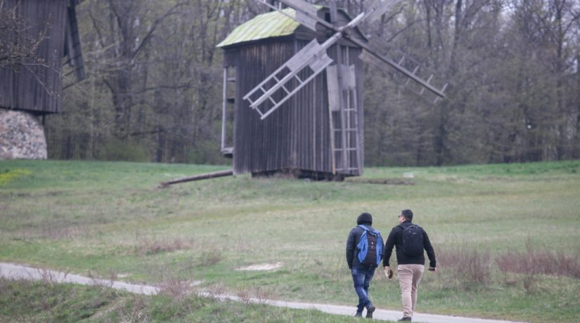 толока, Пирогово