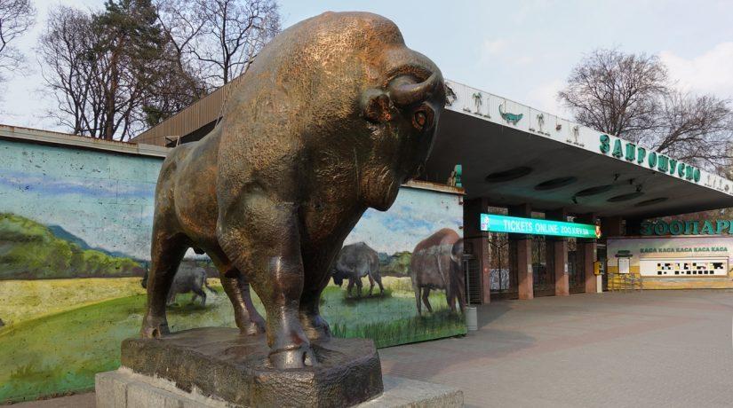 Известные скульпторы восстановят фигуры зубра и львов возле входа в зоопарк