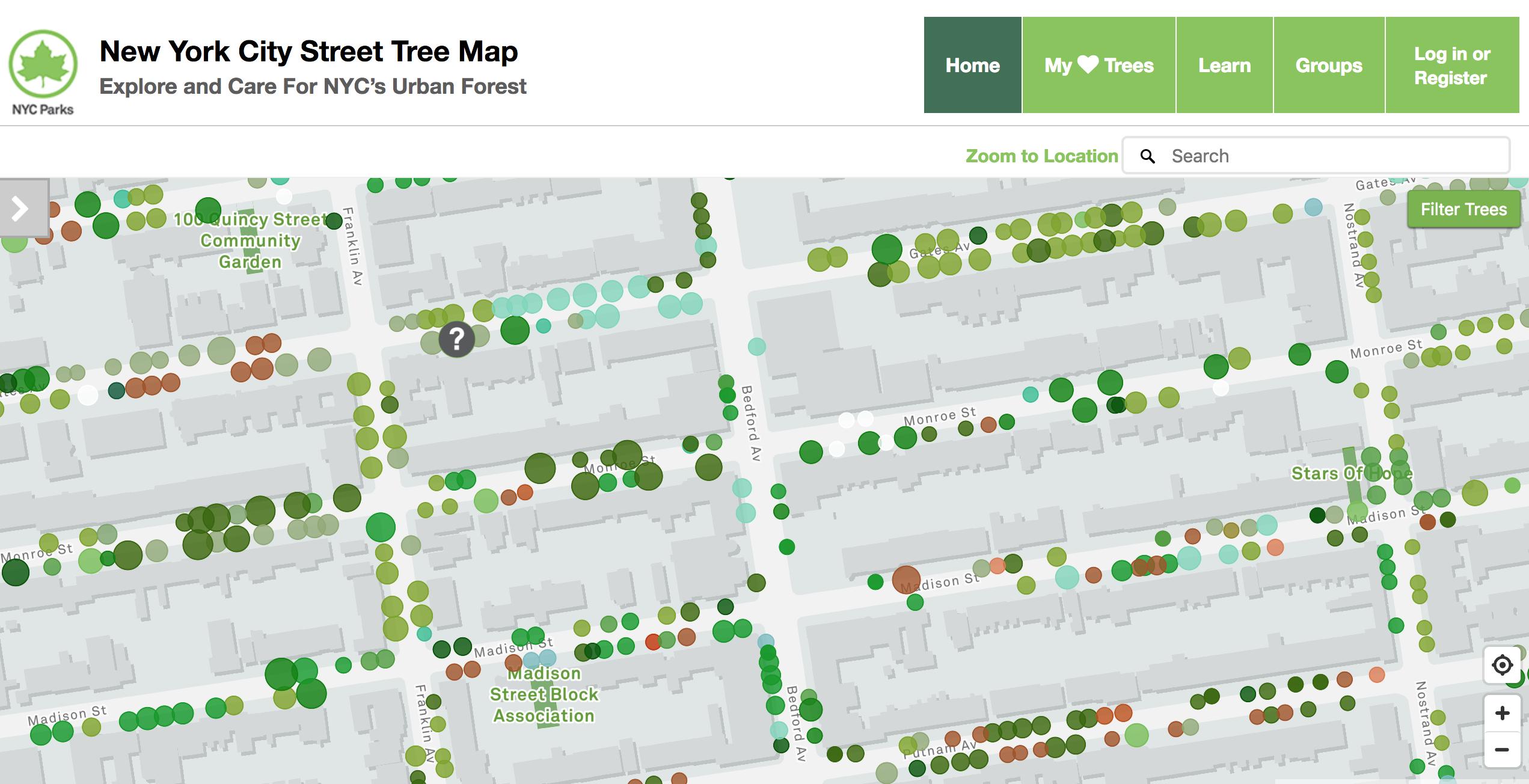 карта деревьев
