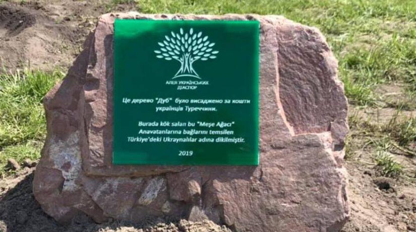 В Русановском парке высадили первые деревья на аллее украинских диаспор