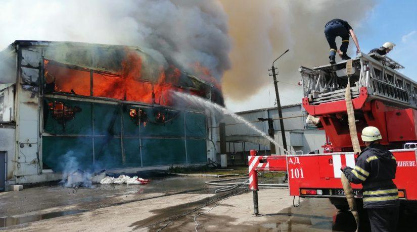 В Василькове произошел сильный пожар на птицефабрике