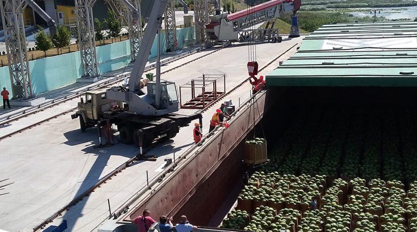 Под Киевом разгрузили баржу с 400 тоннами херсонских арбузов
