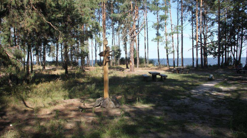 Под Киевом на месте элитных охотничьих угодий появится национальный парк