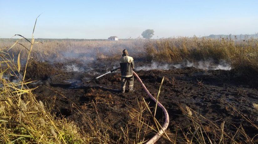 В Киевской области сжигание травы привело к пожару на торфяниках