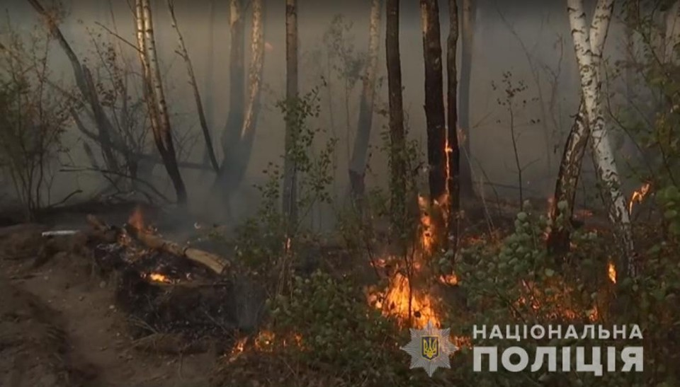 лес, пожар, тушение