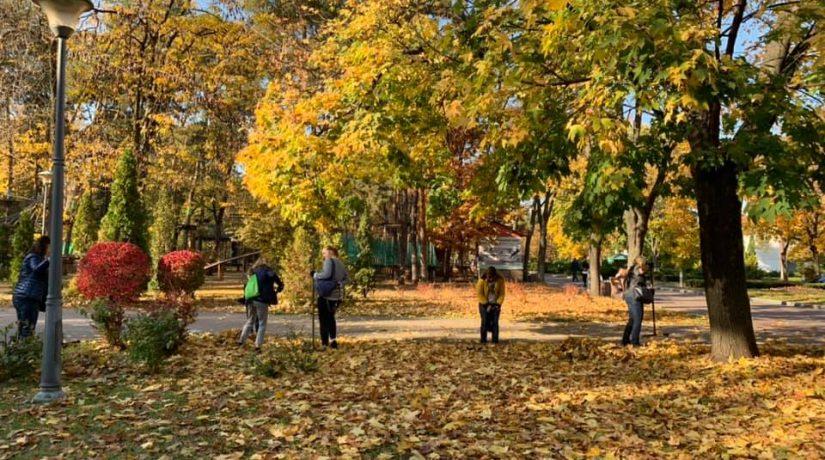 толока, осень