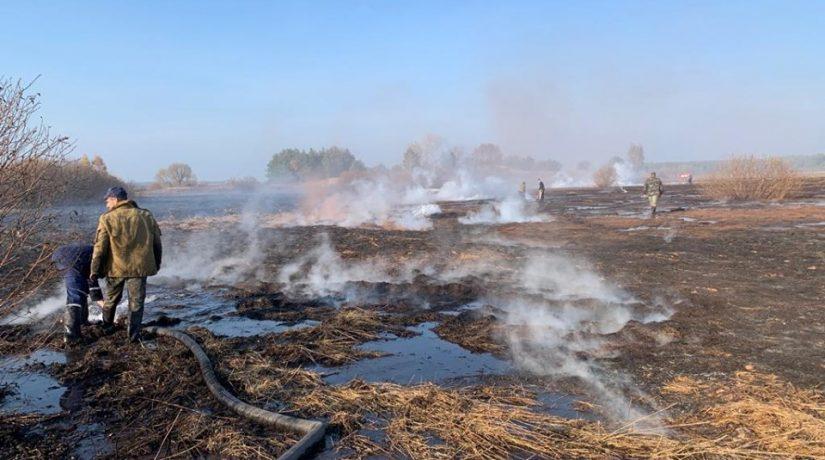 В Иванковском районе горят торфяники площадью 5 га