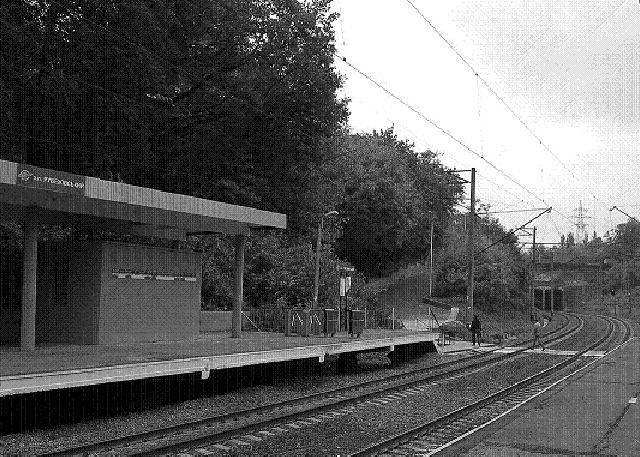 Полустанок Рубежовский, рядом со ст. метро «Берестейская», современный вид. В 1919 г. неподалеку отсюда большевики расстреливали офицеров