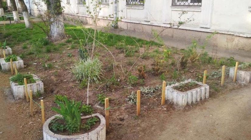 На улице Гарматной обустроили зеленый уголок, ставший победителем конкурса