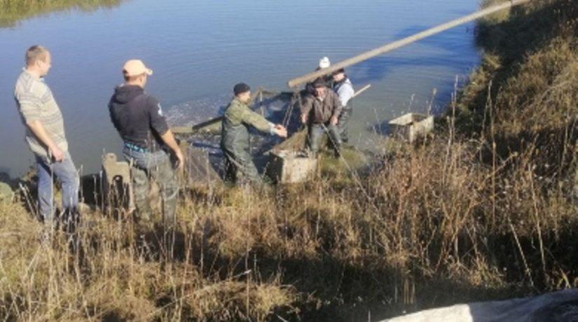 В Каневское водохранилище выпущено 4 тонны рыбы