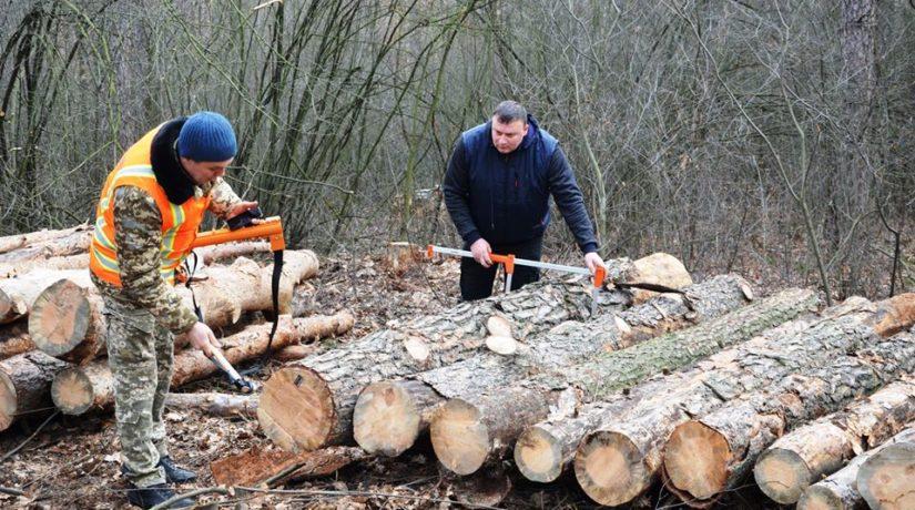 древесина, маркировка
