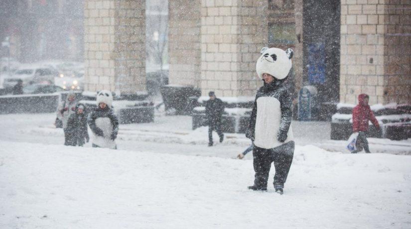 снег, Киев