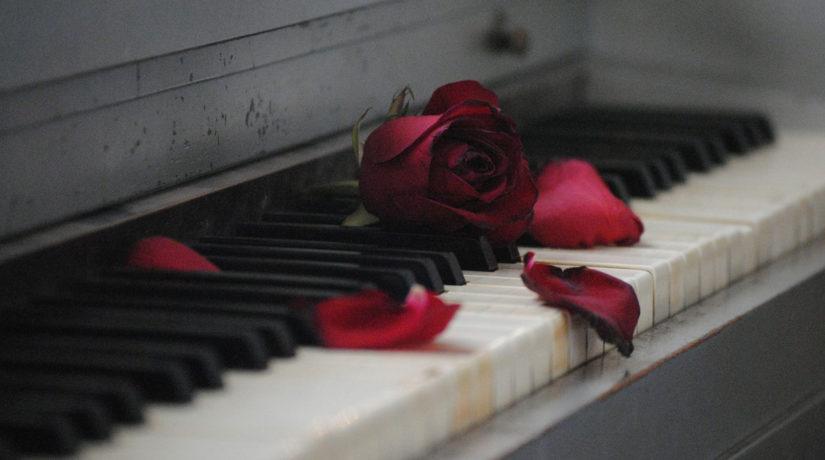 пианино, роза