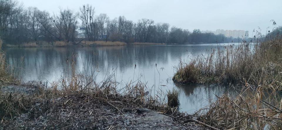озеро Луговое, мазут