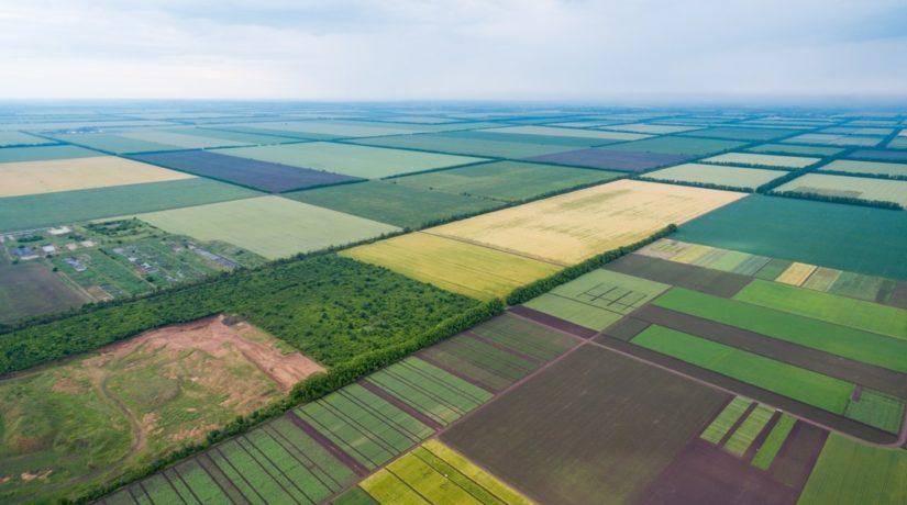 Вокруг земельной реформы много политических спекуляций – депутат Киеврады