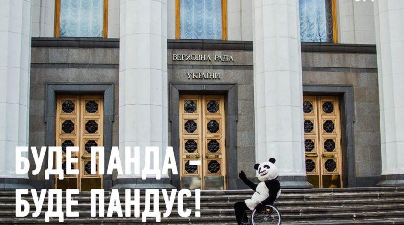 Панду прокатили Киевом в инвалидной коляске – выводы печаль