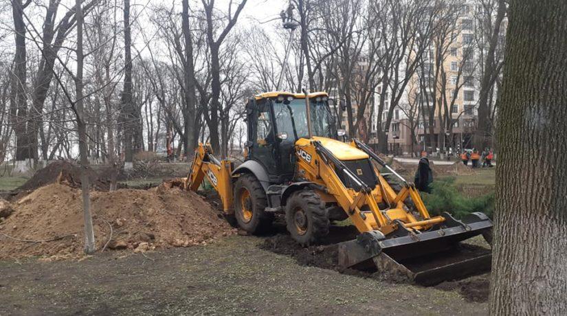Благоустроят и озеленят: Мариинский парк начали приводить в порядок