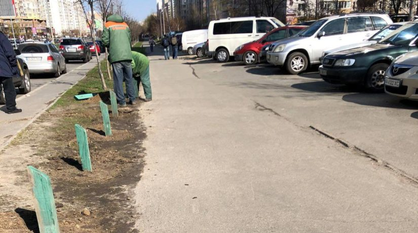 На улице Ахматовой установили антипарковочные столбики