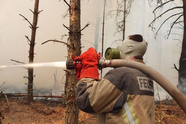 У Чорнобилі загасили один осередок тління