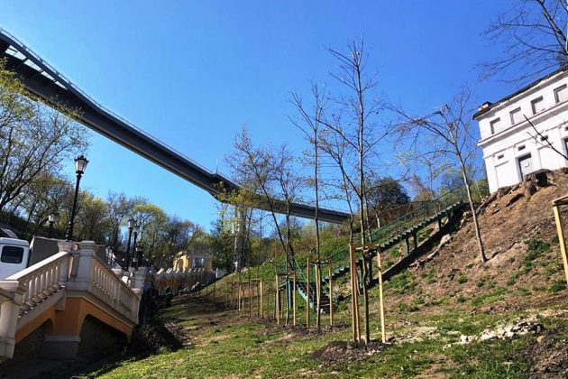 Біля пам'ятника Магдебурзькому праву висадили ще 70 кущів і 10 «багряних» дерев