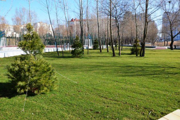 Оновлення фітнес-парку біля Лебединого озера – екватор пройдено