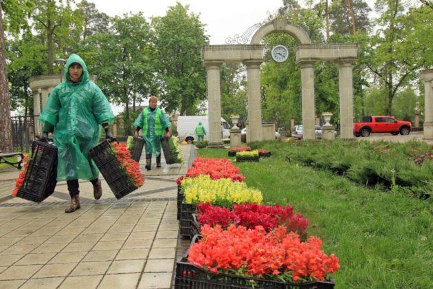 10 тисяч квітів прикрасять парки Ірпеня