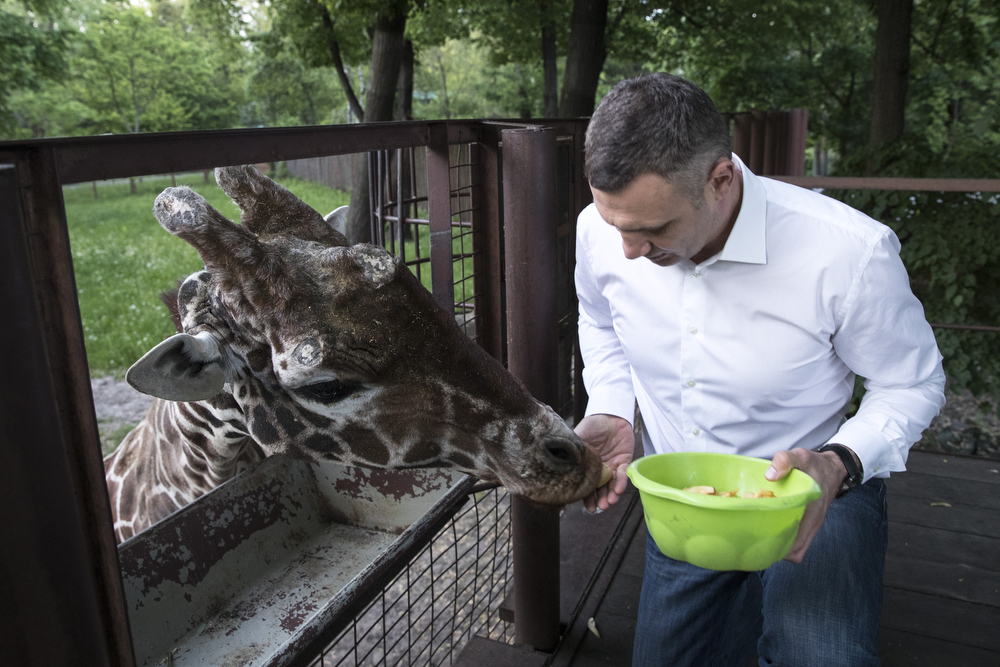 Киевский зоопарк Кличко