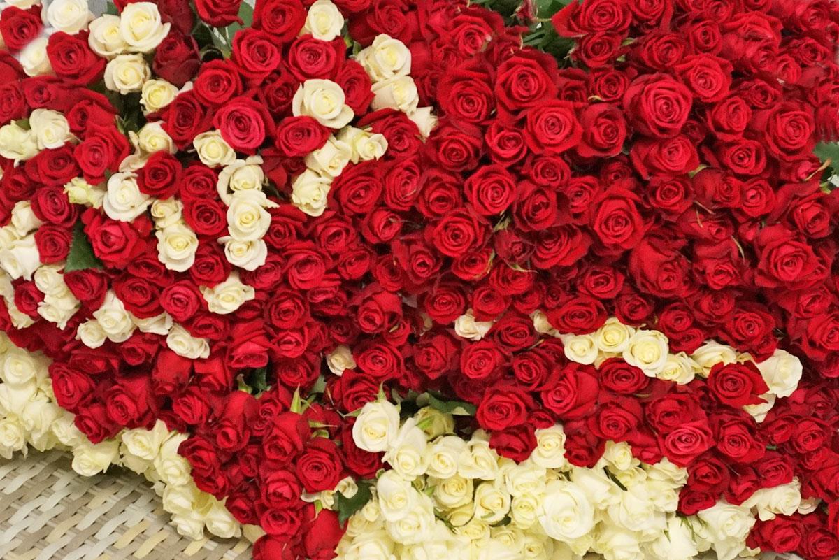 Цветы в День Матери: как выбрать