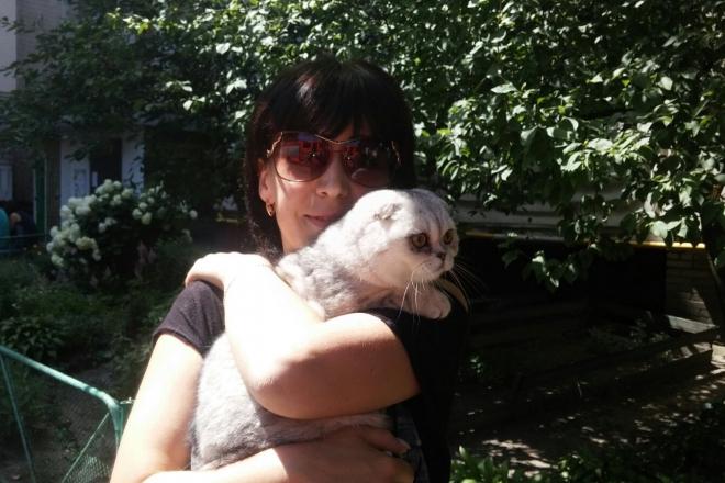 2 тижні після вибуху: під завалами на Позняках знайшли кішку
