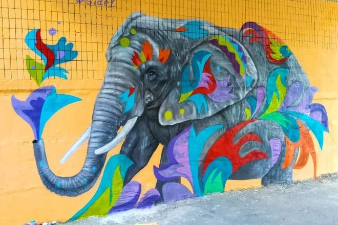 На Борщагівці з'явився слон (ФОТО)