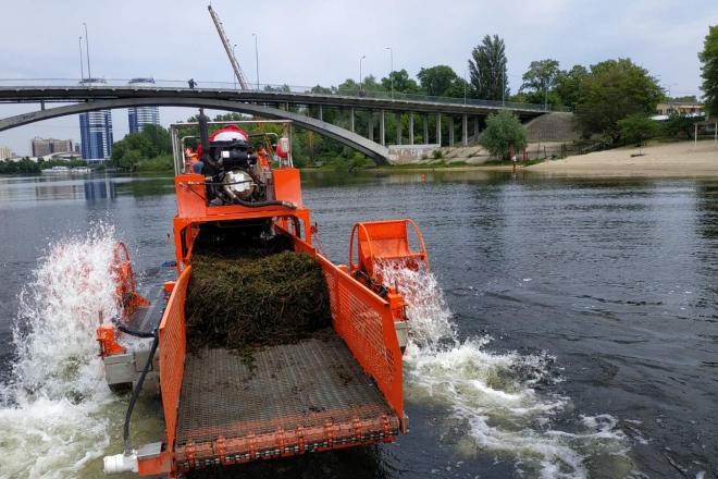 Цифра дня. Скільки тонн водоростей прибрали біля столичних пляжів