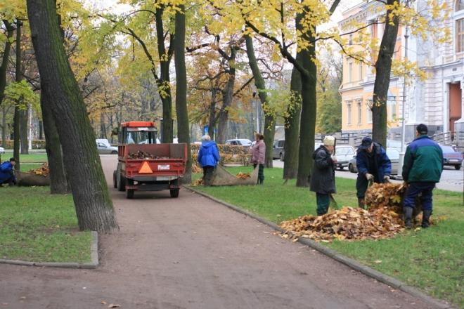 На Київщині з'являються села, де листя більше не спалюють