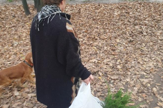 Бабуся с песиком крала кущі в парку Голосіївського району (ФОТО)