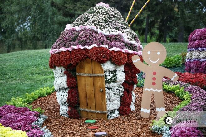 Імбірні чоловічки та лави-шоколадки. Яскравий фестиваль хризантем на Співочому полі (ФОТО)